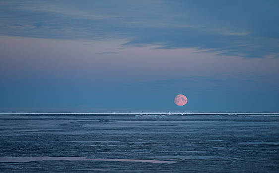 Reimar Gaertner - Red Moon rising over blue sky of the Beaufort Sea at Barter Isla