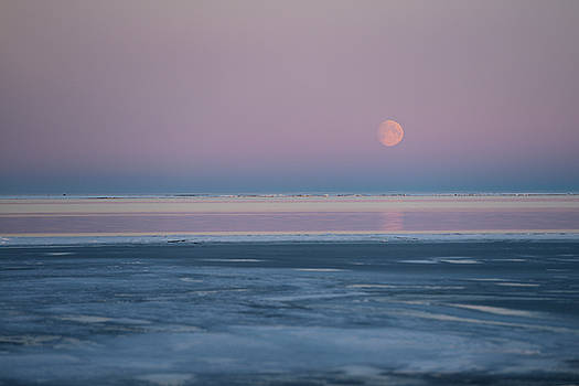 Reimar Gaertner - Red Moon rising over pink sky of the Beaufort Sea at Kaktovik Al
