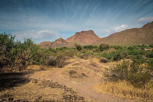 Rosemary Woods-Desert Rose Images - Red Mountain Desert Landscape-IMG_042017