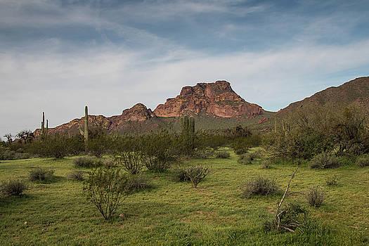 Rosemary Woods-Desert Rose Images - Red Mountain-IMG_721717