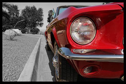 Red Mustang  by Derek Bratton