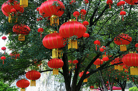 Reimar Gaertner - Red National Day lanterns in trees at Elephant Trunk Hill Park o