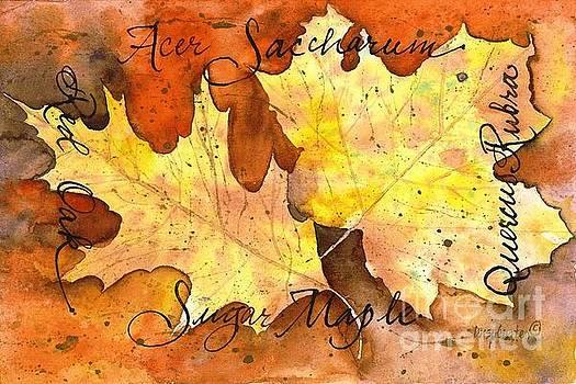 Red Oak and Sugar Maple Leaves by Diane Splinter