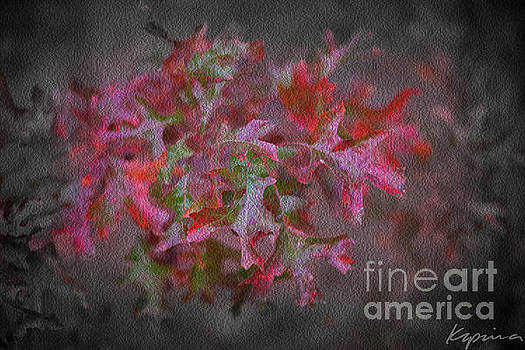 Red Oak Leaves, Grapevine Texas by Greg Kopriva