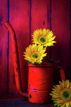 Red Oil Can And Sunflowers by Garry Gay