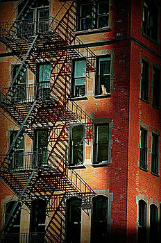 Diana Angstadt - Red Hot Fire Escape