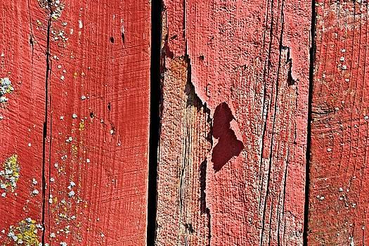 KayeCee Spain - Red Peeling Paint- Fine Art