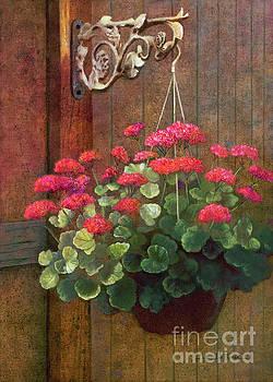 Red Petals Geraniums by Nancy Lee Moran