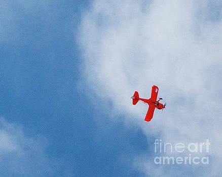 Red Plane by Cheryl Del Toro