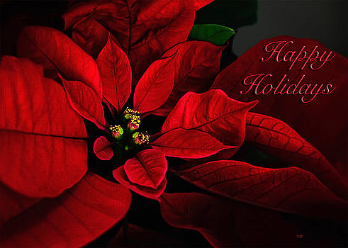 Lois Bryan - Red Poinsettia Happy Holidays Card