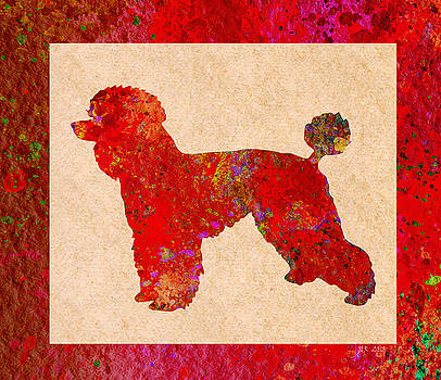 Bamalam  Photography - Red Poodle