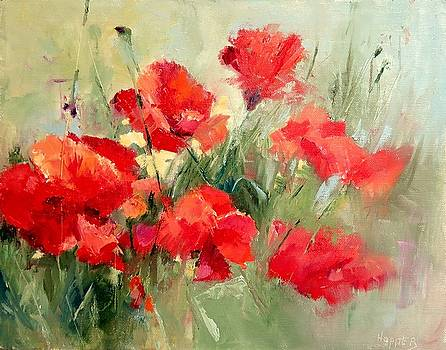 Red Poppies by Carol Hopper