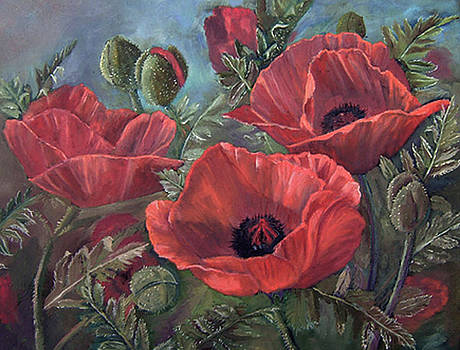Red Poppies by Jan Holman