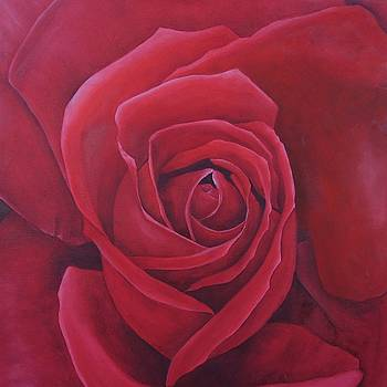 Red Red Rose by Brandon Sharp