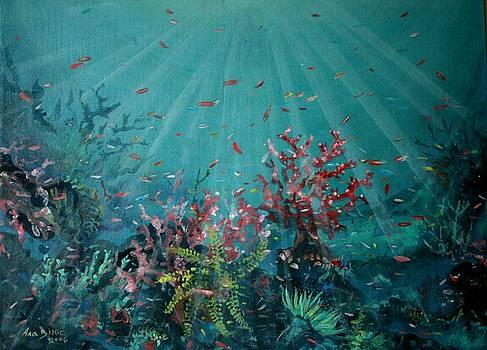 Red Reef  2006   by Ana Bikic