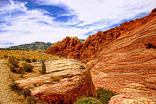 Red Rock Canyon Nevada by Frank Freni