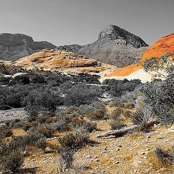 Red Rock Canyon, NV by Bruce Bradley