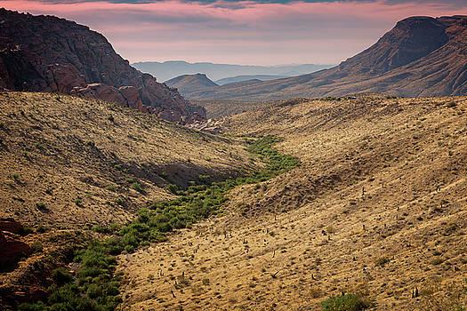 Ricky Barnard - Red Rock Canyon VI