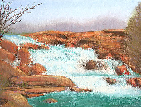 Red Rock Falls by Marna Edwards Flavell