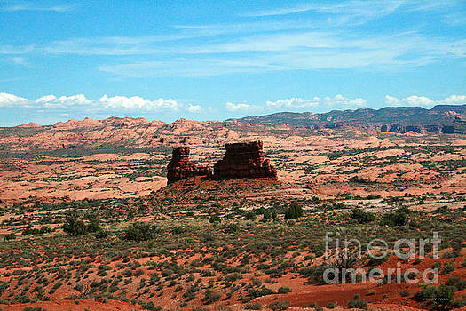 Corey Ford - Red Rock Formations Arches National Park