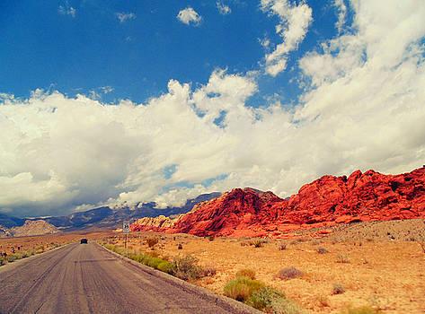 Red Rock Road by Michelle Dallocchio