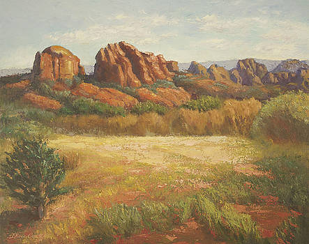 Red Rock Vista by Diana Cox