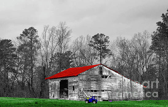 Red Roof Barn by Diana Mary Sharpton