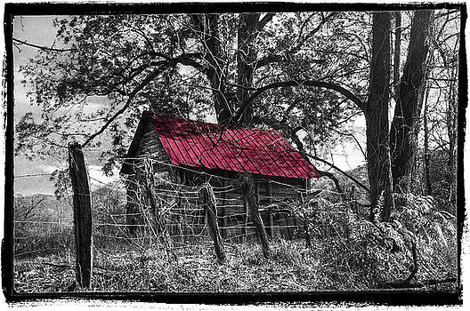 Red Roof Black and White by Debra and Dave Vanderlaan