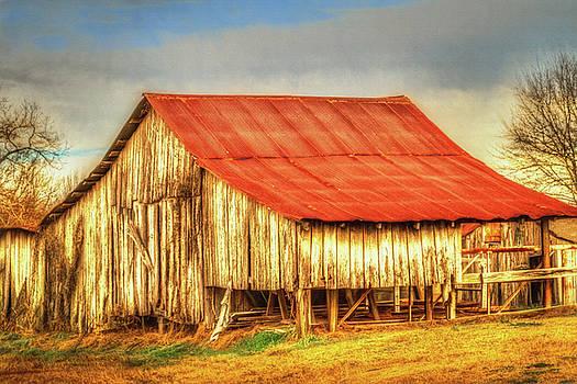 Barry Jones - Red Roofed Barn