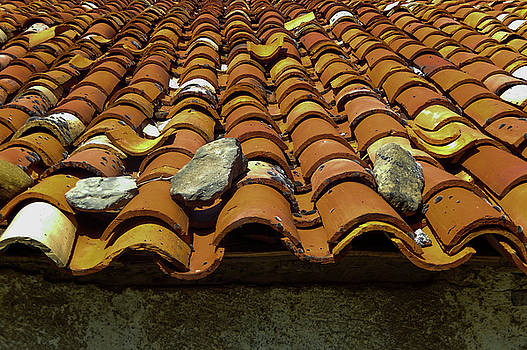 Red Rooftop Tiles by Mike Shaw