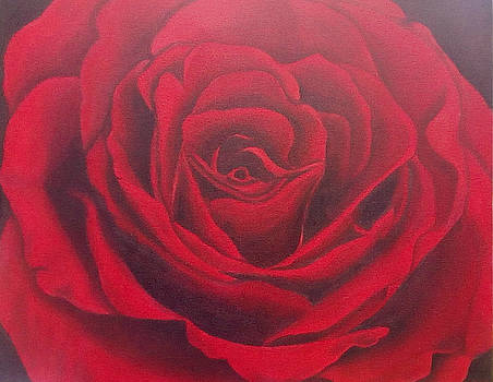 Red Rose 2 by Maryna Moolman
