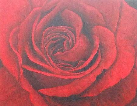 Red Rose 3 by Maryna Moolman