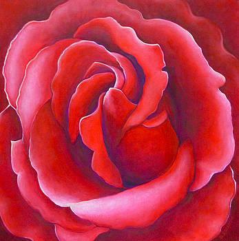 Red Rose by Barbara Rockhold