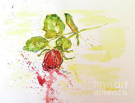 Red Rose Bud by Lynda Cookson