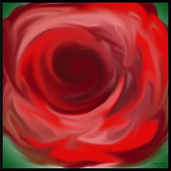 Gina Nicolae Johnson - Red rose