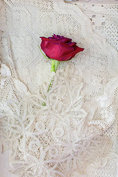 Red Rose on Lace by Susan Gary