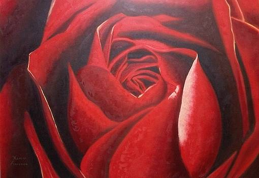 Red Rose by Xavier Florensa