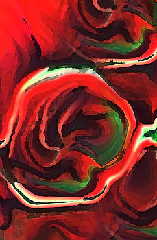 Red Roses by Anne Hamilton