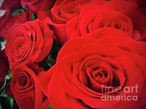 Red Roses by Jasna Dragun