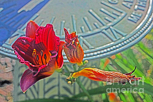 Red Rusty Lilly and Blue Sundial  by David Frederick