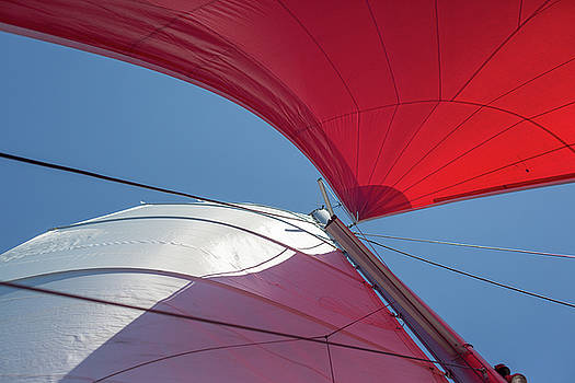 Red Sail on a Catamaran 3 by Clare Bambers