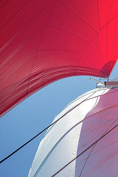 Red Sail on a Catamaran 4 by Clare Bambers