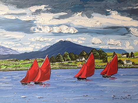 Red sails Connemara Ireland by Diana Shephard