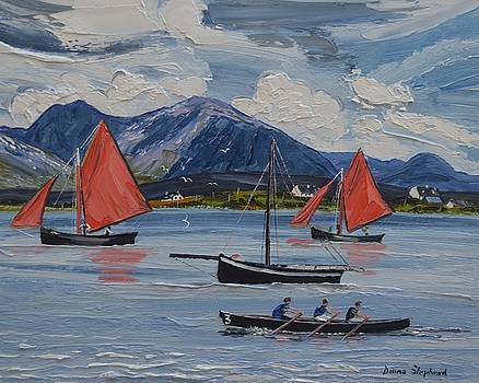 Red Sails Roundstone by Diana Shephard