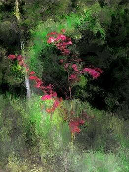 Red Sapling by Richard Okun