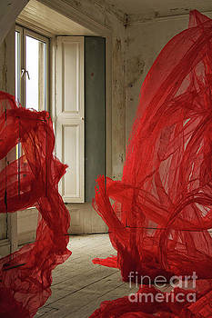 Marc Daly - Red Silk Room