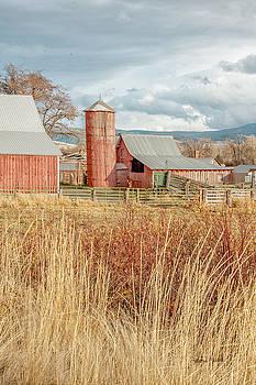 Red Silo  Barn by Ramona Murdock