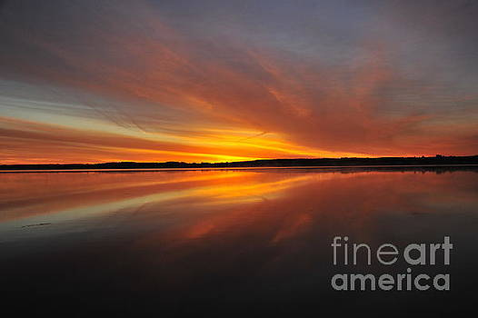 Red Sky at Morning by Terri Gostola