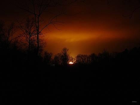 Alana  Schmitt - Red Sky at Night