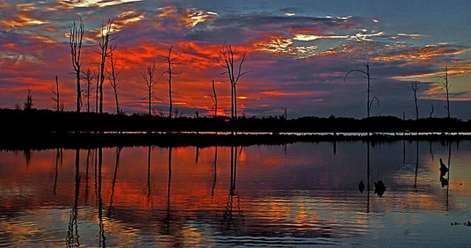 Red Sky by Garnie McEwen